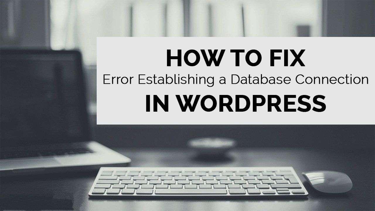 sửa lỗi database trong wordpress