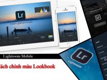 Cách chỉnh màu Lookbook ngọt ngào tone cam bằng Lightroom Mobile – P4